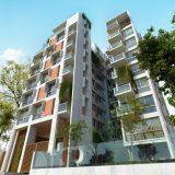 Dhanmondi Apartment